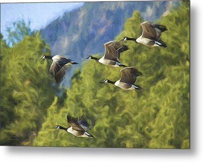 Geese On A Mission Metal Print