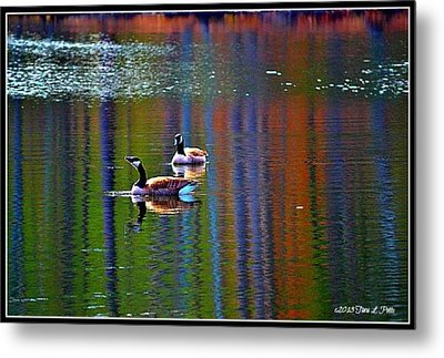Metal Print featuring the photograph Geese On The Lake by Tara Potts