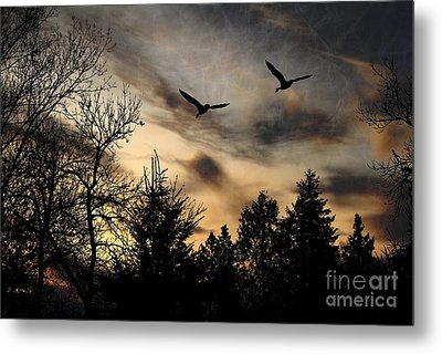 Metal Print featuring the photograph Geese Silhouette by Marjorie Imbeau
