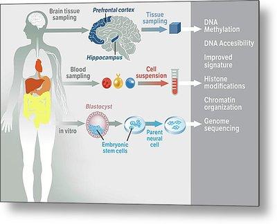 Gene Therapy Processes Metal Print