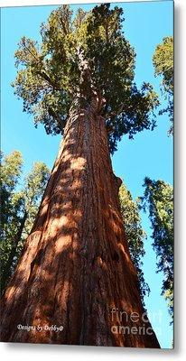 General Sherman Tree, Sequoia National Park, California Metal Print