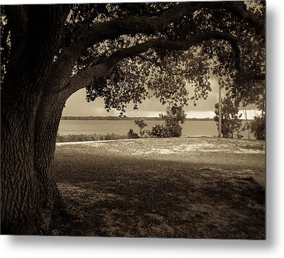 Gentle Shelter Metal Print by Christy Usilton