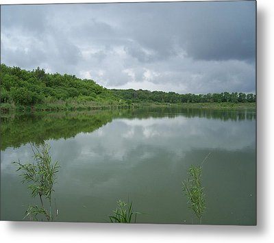 Metal Print featuring the photograph Gentle Spring Day by Teresa Schomig