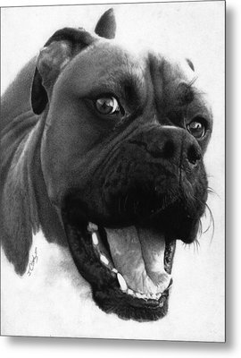 George - Boxer Dog Metal Print by Justin Clark