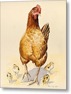 George's Hen And Her Chicks Metal Print by Alison Cooper