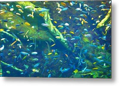 Georgia Aquarium Metal Print by Dan Sproul