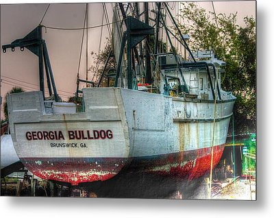 Metal Print featuring the photograph Georgia Bulldog by Dennis Baswell