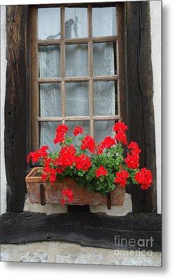 Geraniums In Timber Window Metal Print by Barbie Corbett-Newmin