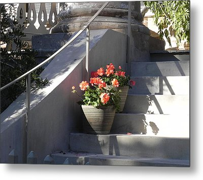 Geraniums Look Better In Beaufort Metal Print by Patricia Greer