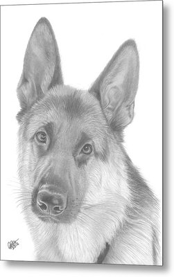 German Shepherd Metal Print