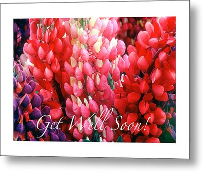Get Well Soon Metal Print by Harold E McCray