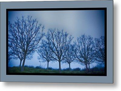 Getty Trees Metal Print by Rosanne Nitti