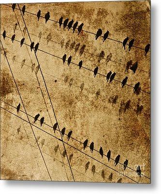 Ghost Birds On A Wire Metal Print by Deborah Talbot - Kostisin