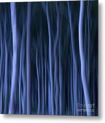 Ghost Forest Metal Print by Heiko Koehrer-Wagner