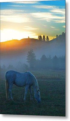 Ghost Horse Metal Print by Annie Pflueger