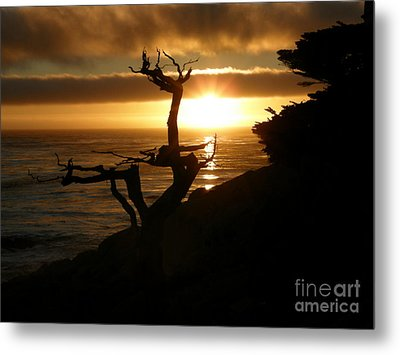 Ghost Tree At Sunset Metal Print