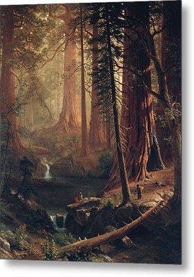 Giant Redwood Trees Of California Metal Print by Albert Bierstadt