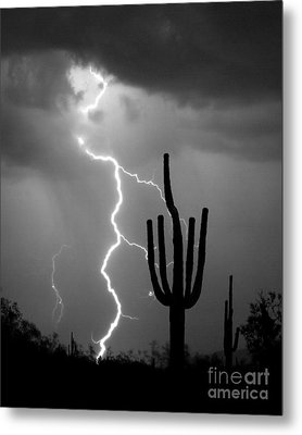 Giant Saguaro Cactus Lightning Strike Bw Metal Print by James BO  Insogna