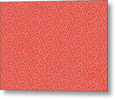 Gibweed Coral Metal Print by Kimberly McSparran