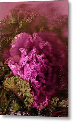 Gift From The Garden Metal Print