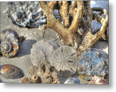 Gifts From The Sea Metal Print by Benanne Stiens