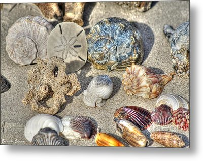 Gifts Of The Tides Metal Print by Benanne Stiens