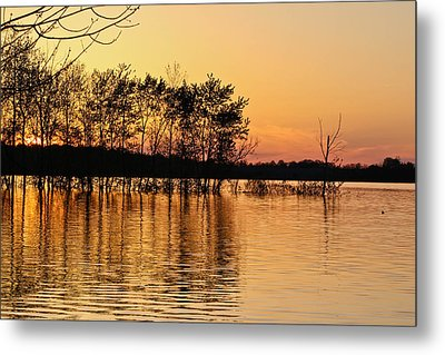 Gilded Sunset Metal Print by Julie Andel
