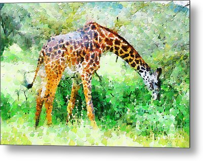 Giraffe Eating Grass Painting Metal Print by George Fedin and Magomed Magomedagaev