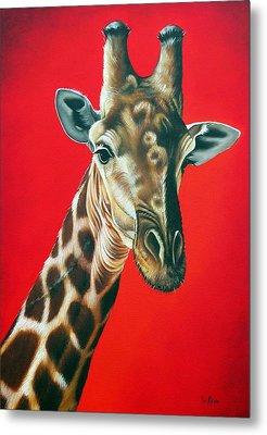 Giraffe Metal Print by Ilse Kleyn