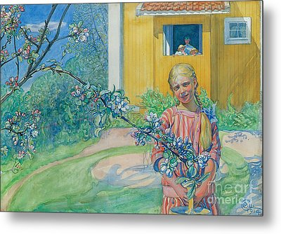 Girl With Apple Blossom Metal Print