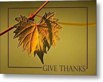 Give Thanks Metal Print by Carolyn Marshall