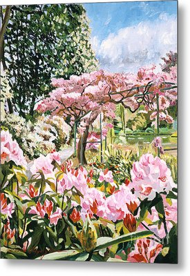 Giverny Rhododendrons Metal Print by David Lloyd Glover