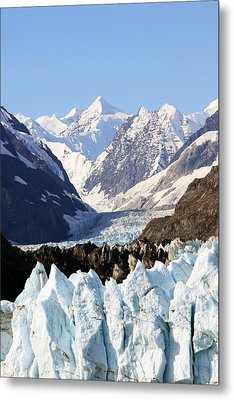 Metal Print featuring the photograph Glacier Bay Alaska by Sonya Lang