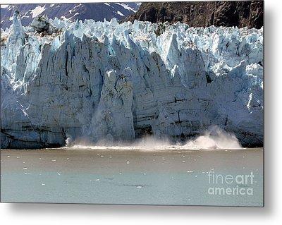 Glacier Bay Alaska Metal Print by Sophie Vigneault