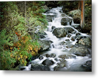 Glacier Creek Metal Print
