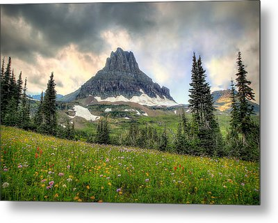 Glacier Meadows Metal Print