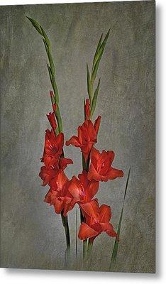 Gladiolus I Metal Print
