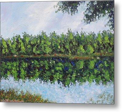 Glenoak Lake Metal Print