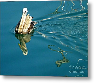 Metal Print featuring the photograph Gliding by Clare Bevan