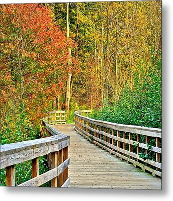 Glorious Beauty Metal Print by Frozen in Time Fine Art Photography