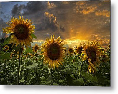 Glory Metal Print by Debra and Dave Vanderlaan