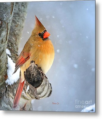 Glowing In The Snow Metal Print