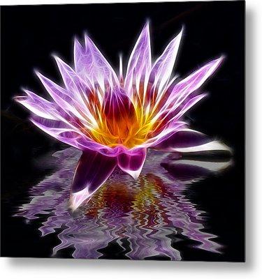 Glowing Lilly Flower Metal Print