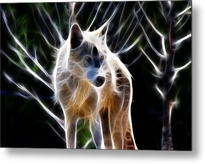 Glowing Wolf Metal Print by Shane Bechler