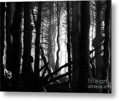 Gnarled Metal Print by Deena Otterstetter