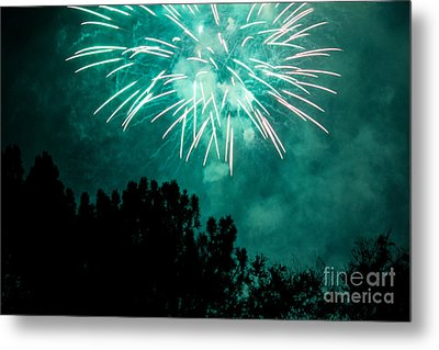 Go Green Metal Print by Suzanne Luft
