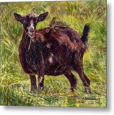 Goat Piggybackers Metal Print