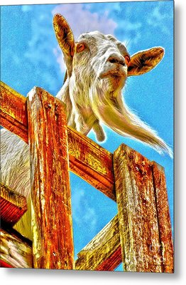 Goat Up High Metal Print