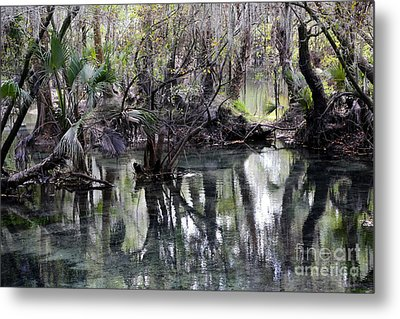 Going Back In Time Metal Print by Carol Groenen