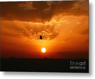 Going Home Alone Metal Print by Leyla Ismet
